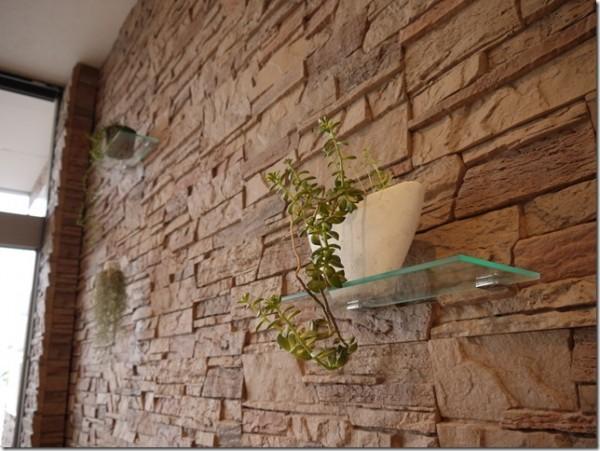 美容室4cmを彩る観葉植物&多肉植物!!癒し&インテリアとしておすすめです。